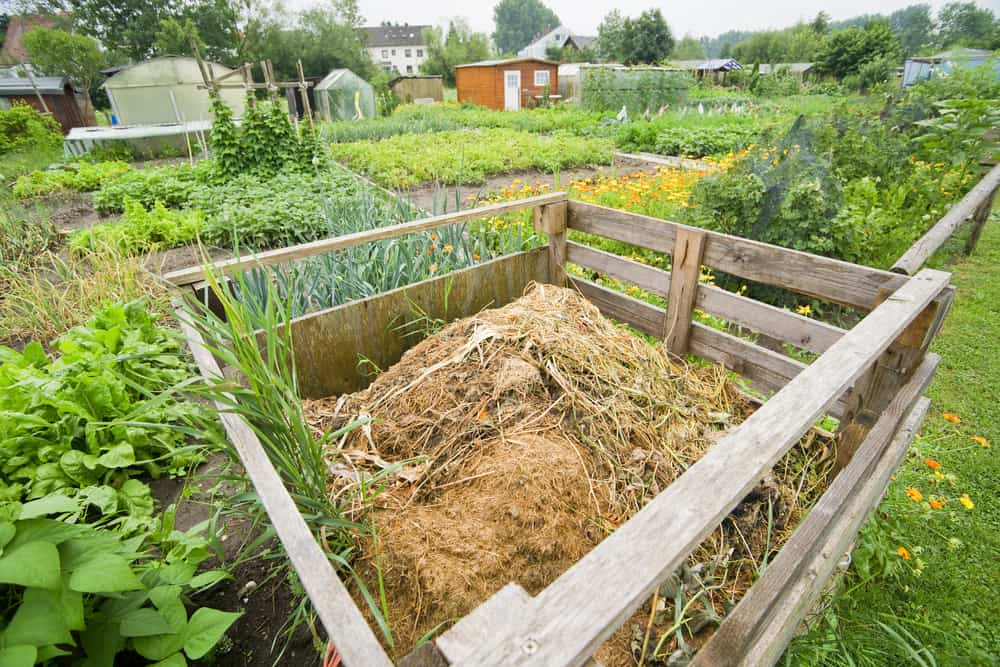 Build a compost pile where you plan to plant