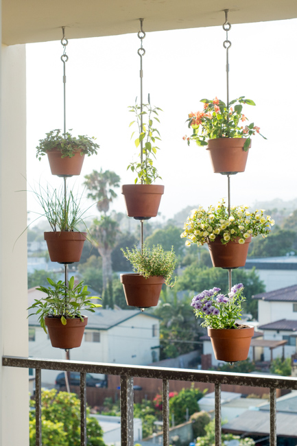 Clay pot vertical garden