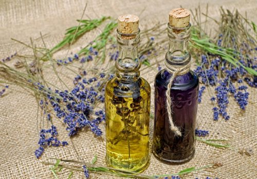 How to Make Lavender Oil? (2 Methods)