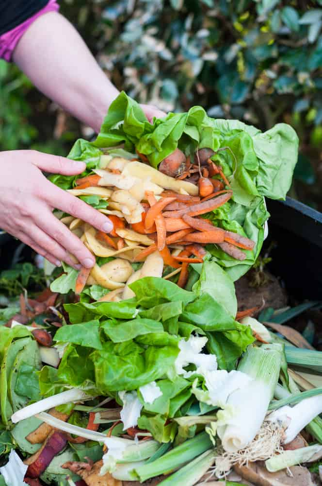 Environmentally-friendly way to dispose of kitchen waste