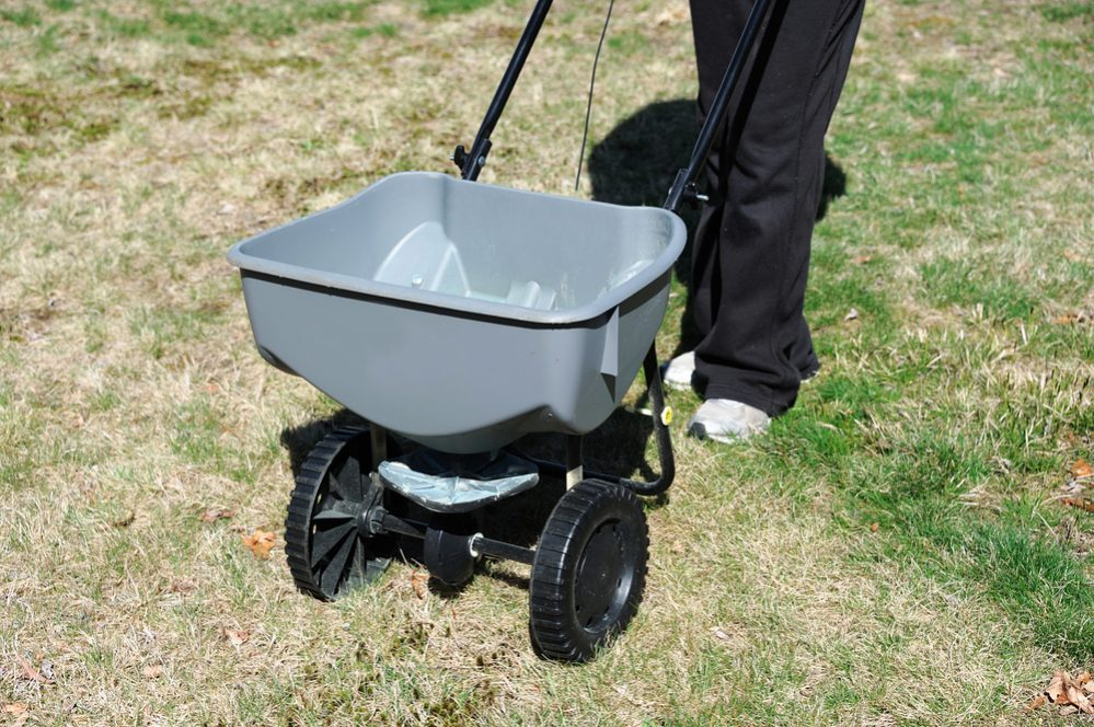 Fertilize lawn at fall