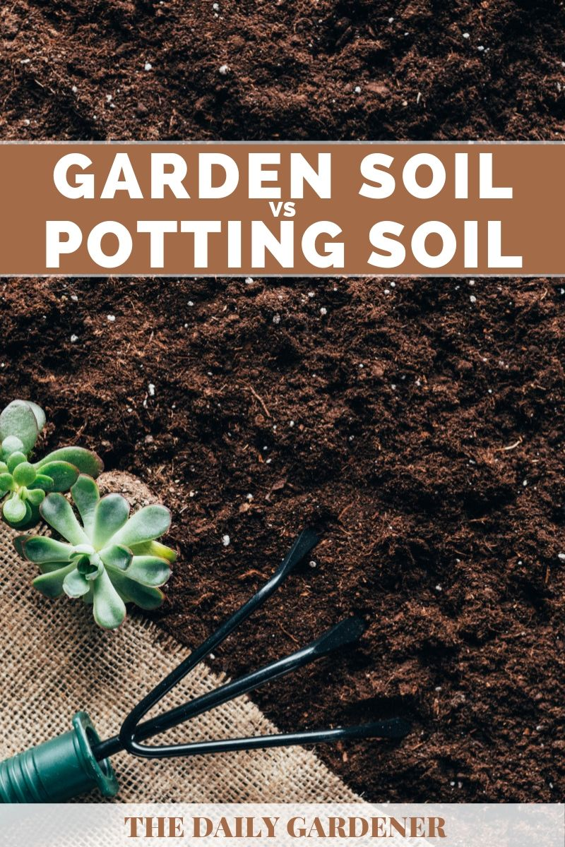Garden Soil vs Potting Soil 2