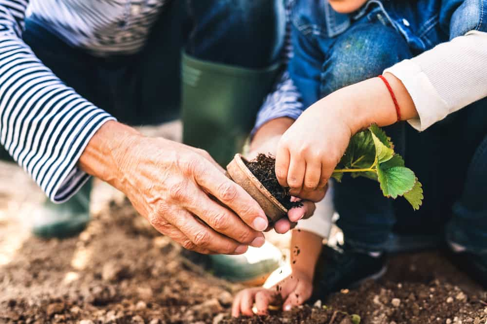 Gardening is a way to bond with family members