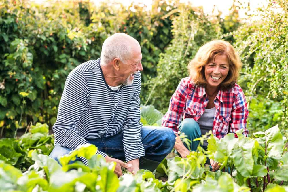 Gardening plays a role in increasing bone strength