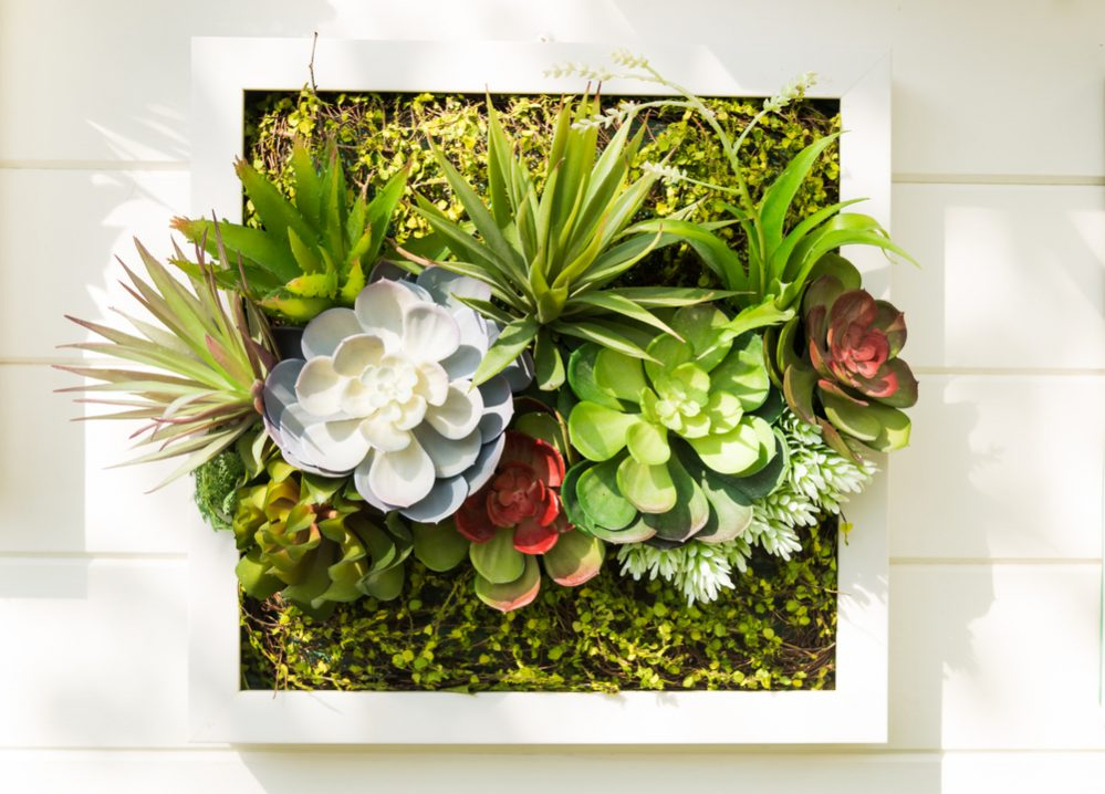 Pallet tray garden 1