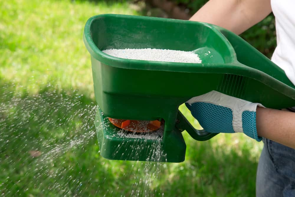 Preparing Your Lawn for Fertilizing