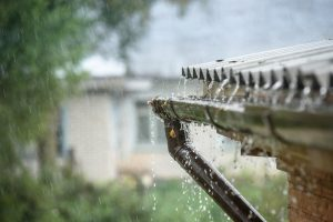 Rain Garden System