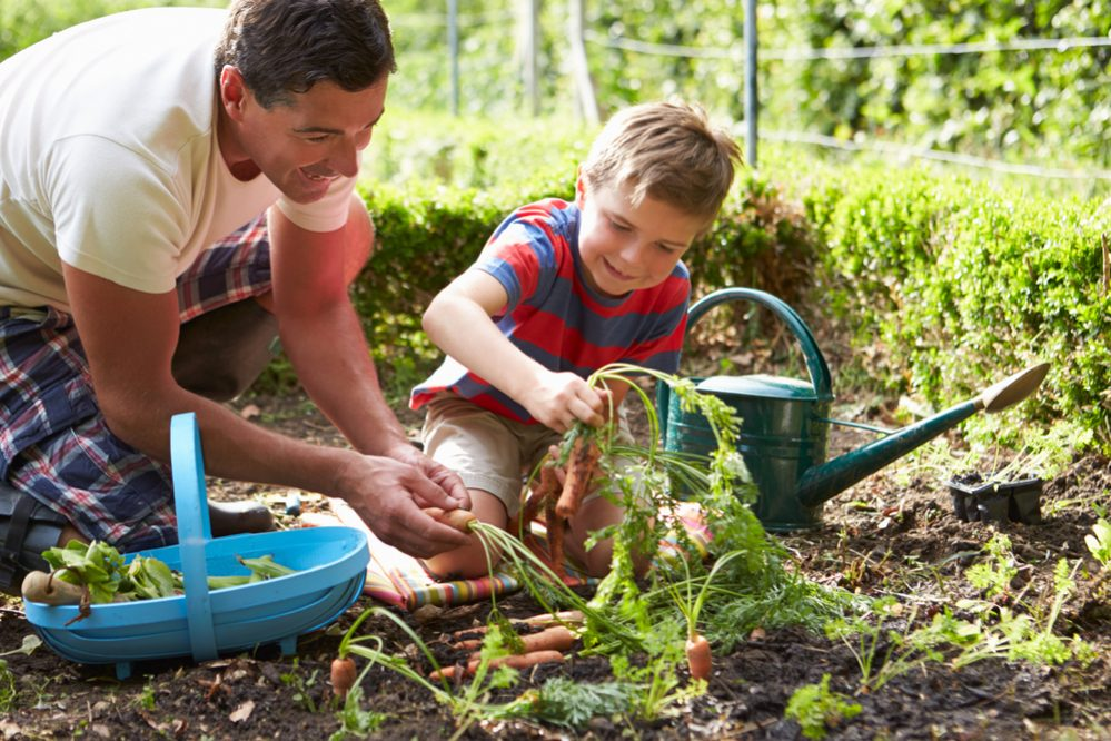 Show Your Child How to Learn from Gardening