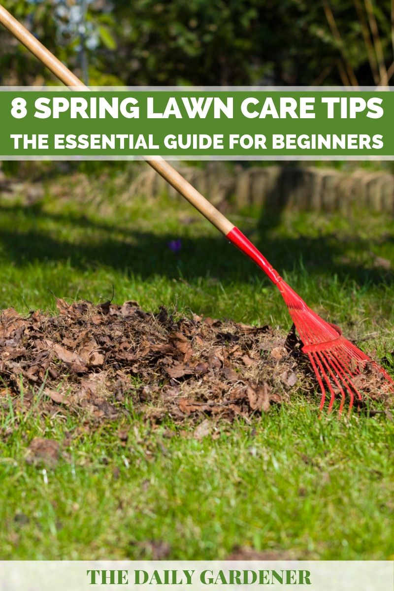 Spring Lawn Care 2