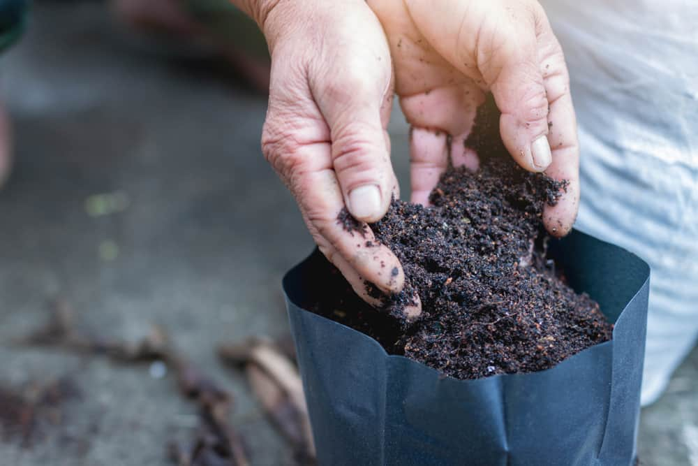 Turn waste into natural fertilizer as an alternative to chemicals – for free