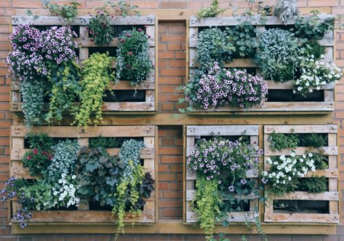 7 Easy Steps to Construct a Perfect Vertical Garden