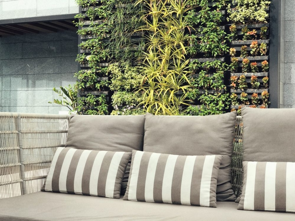Vertical Garden guide