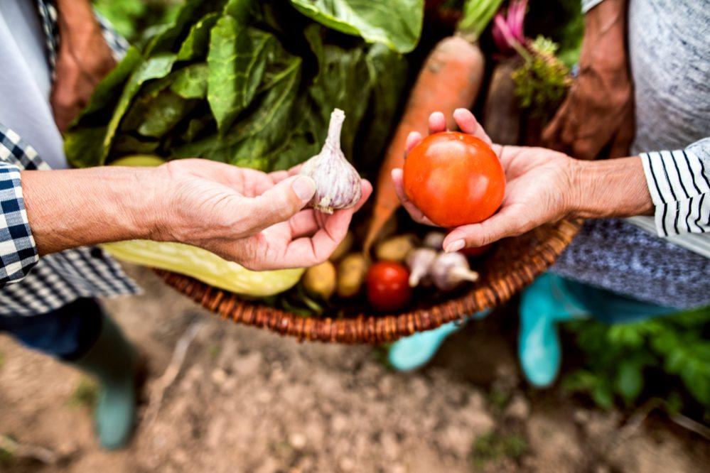 Organic Garden benefits