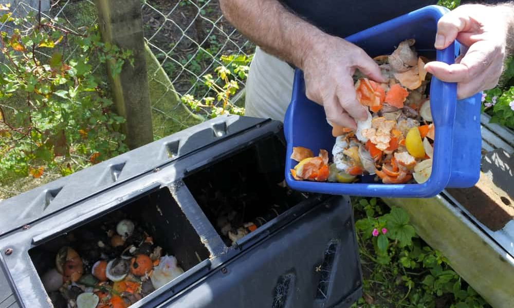 Why start a compost pile