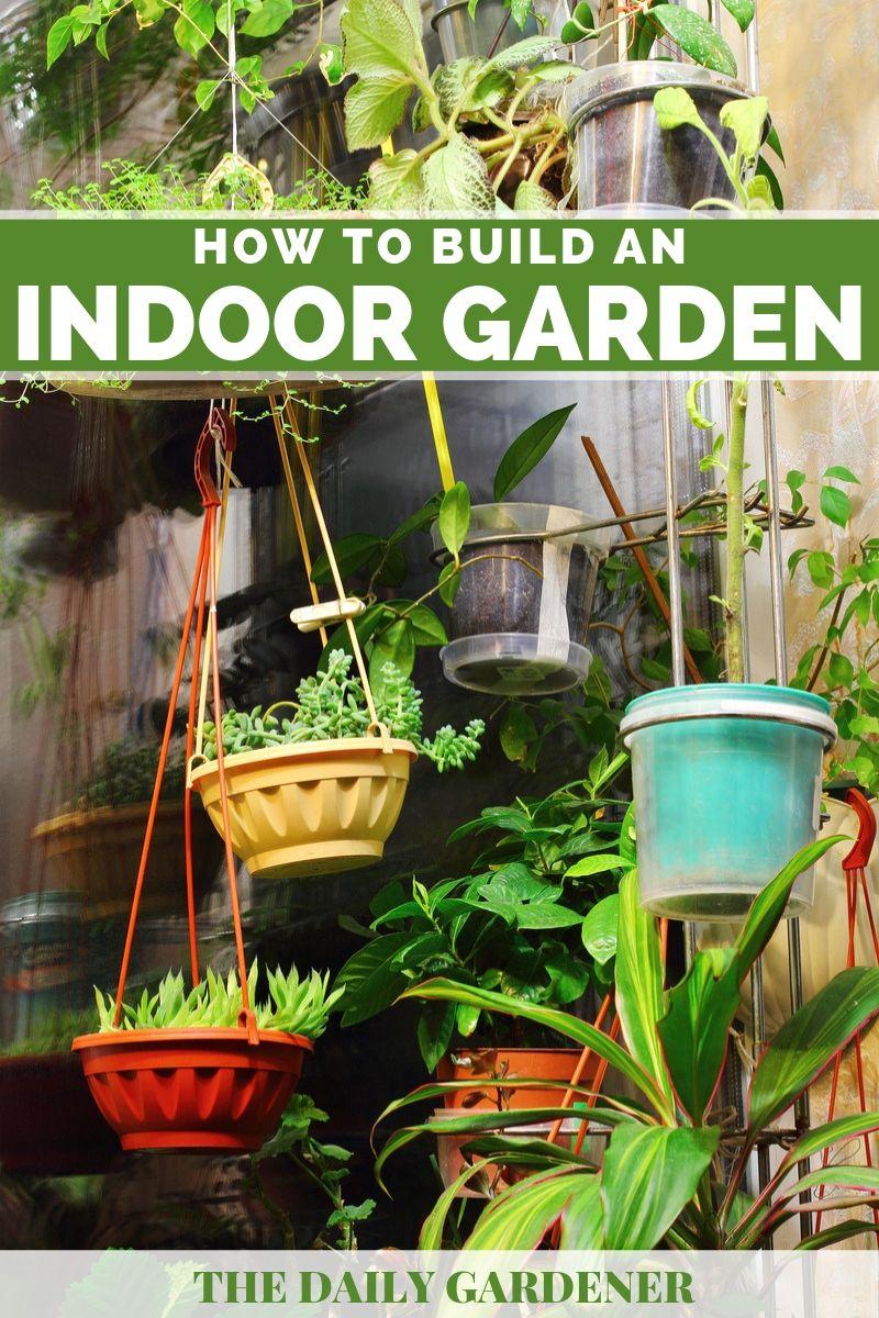 build Indoor Garden 1