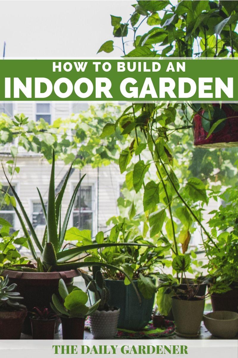 build Indoor Garden 2