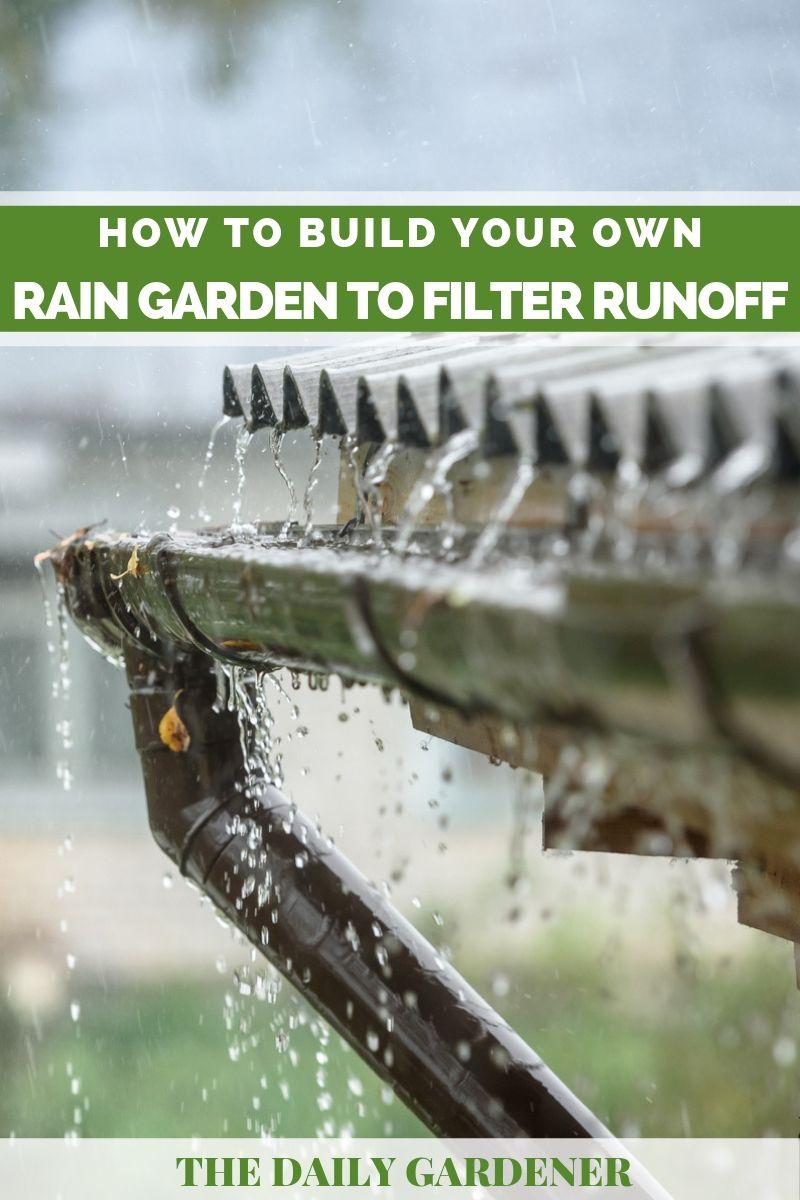 build rain garden 1