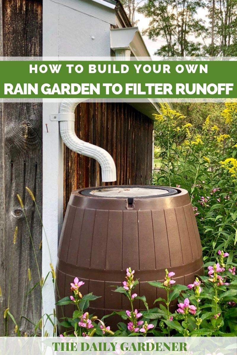 build rain garden 2