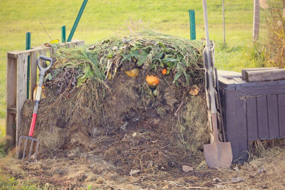 compost pile uses