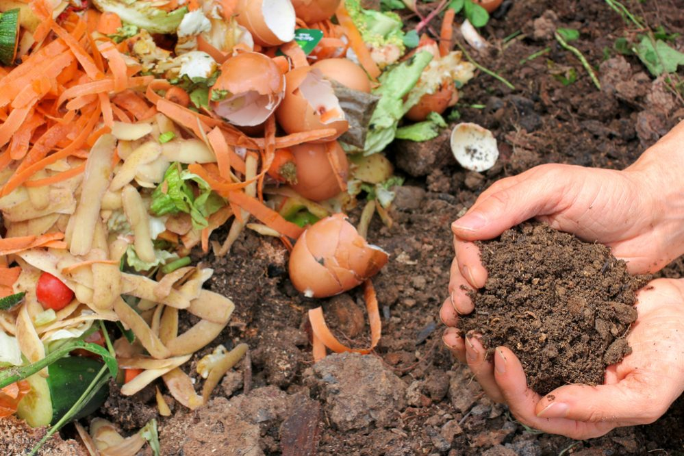 composting basic