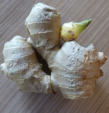 grow ginger from kitchen scraps