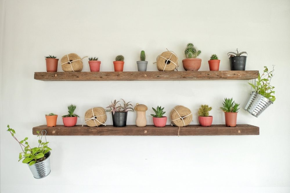 indoor gardening shelves