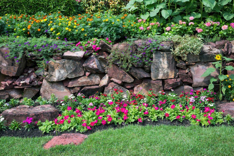 rain garden Maintain