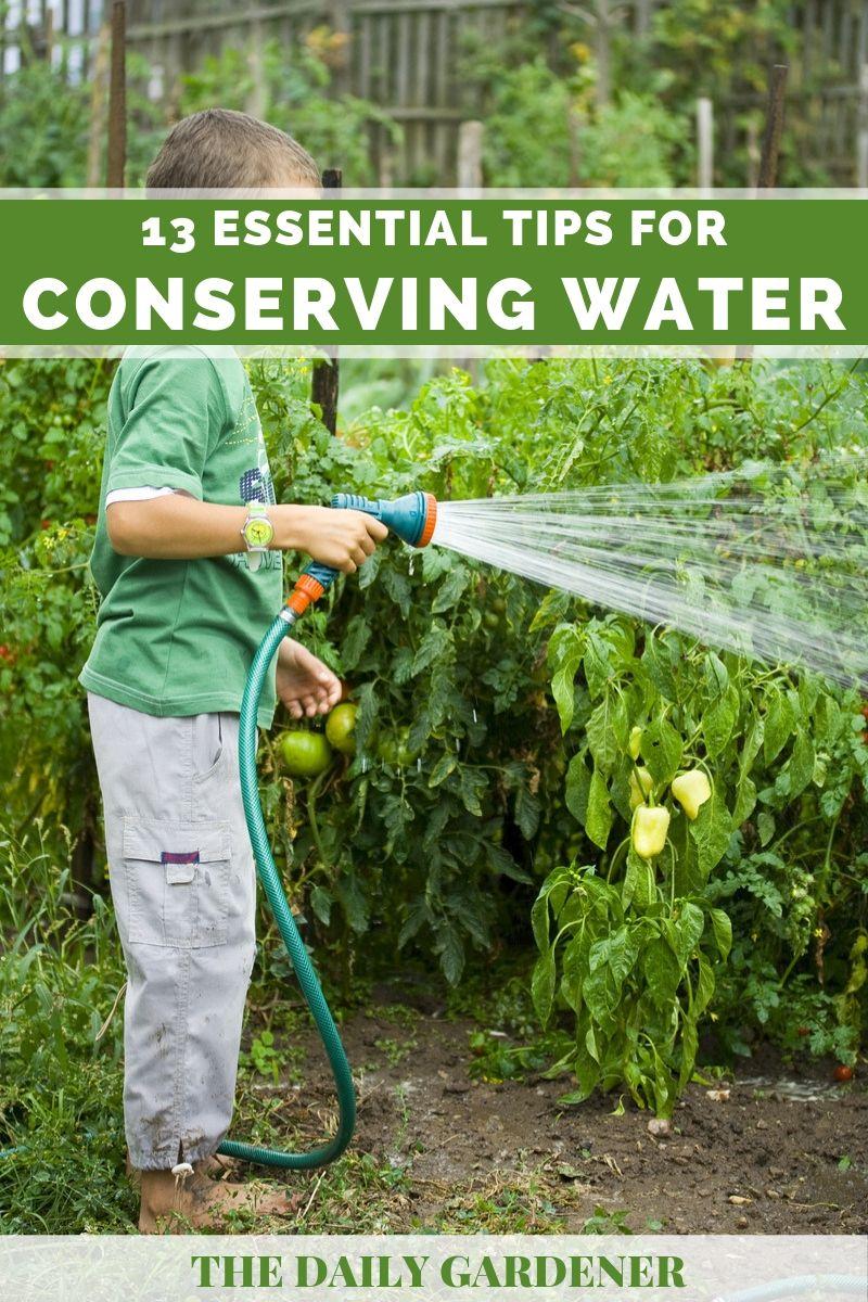 saving garden water 1