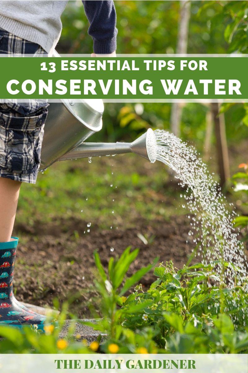 saving garden water 2