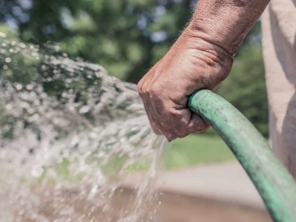 13 Essential Tips for Conserving Water In Your Garden