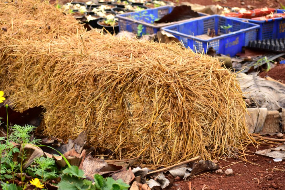 why Build Straw Bale Garden