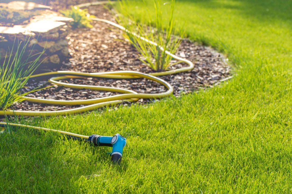 Best Garden Hose Reel How to