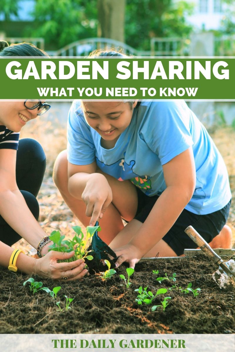 Garden Sharing 1