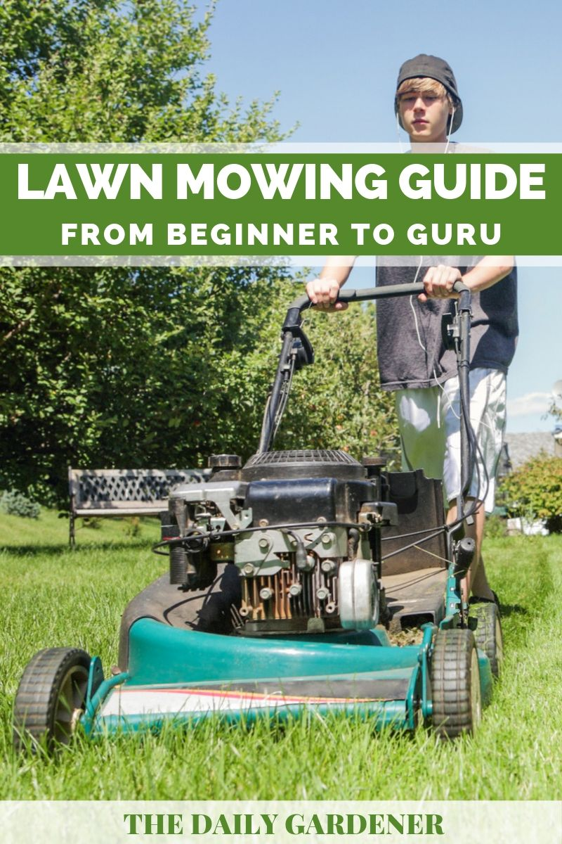 Lawn Mowing Guide 1