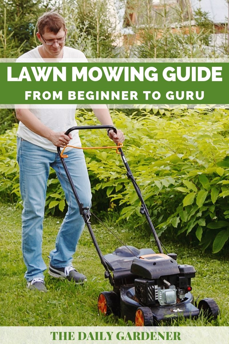 Lawn Mowing Guide 2