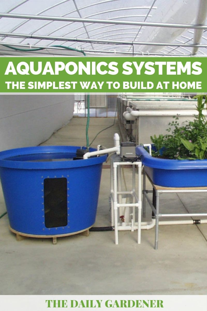 diy aquaponics systems 2