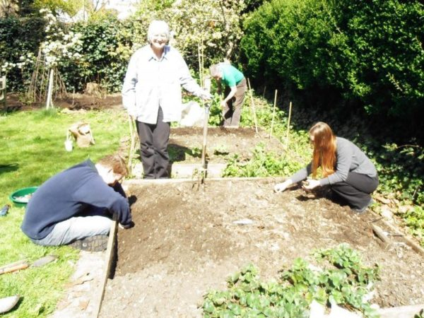 Garden Sharing: What You Need to Know?