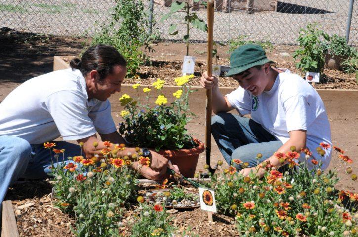 garden share tips