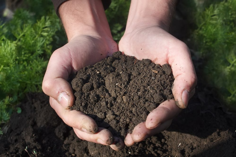 Advantages and Disadvantages of Topsoil
