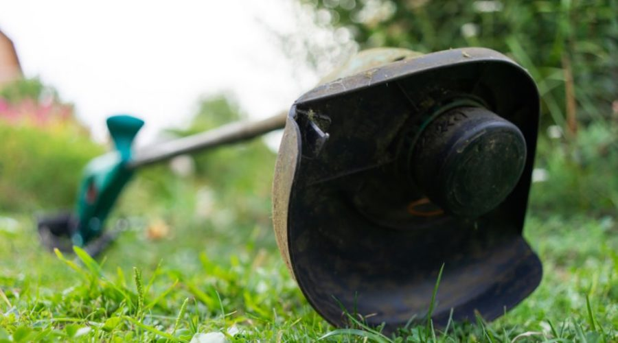 Battery Operated Weed Eater >> 7 Best Cordless Weed Eaters Of 2019 Electric Weed Wacker