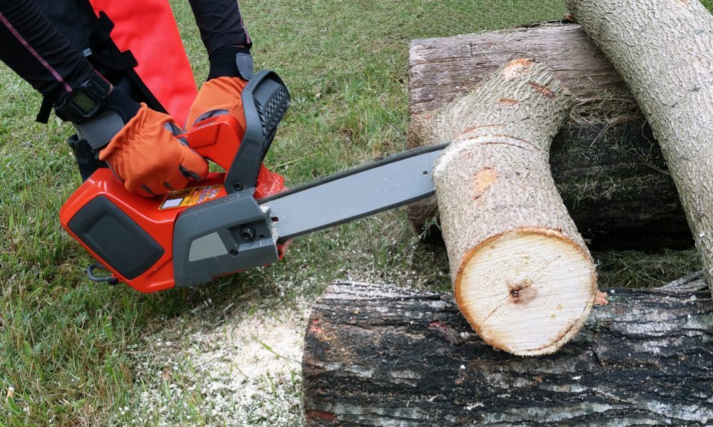 Best Electric Chainsaw Reviews battery