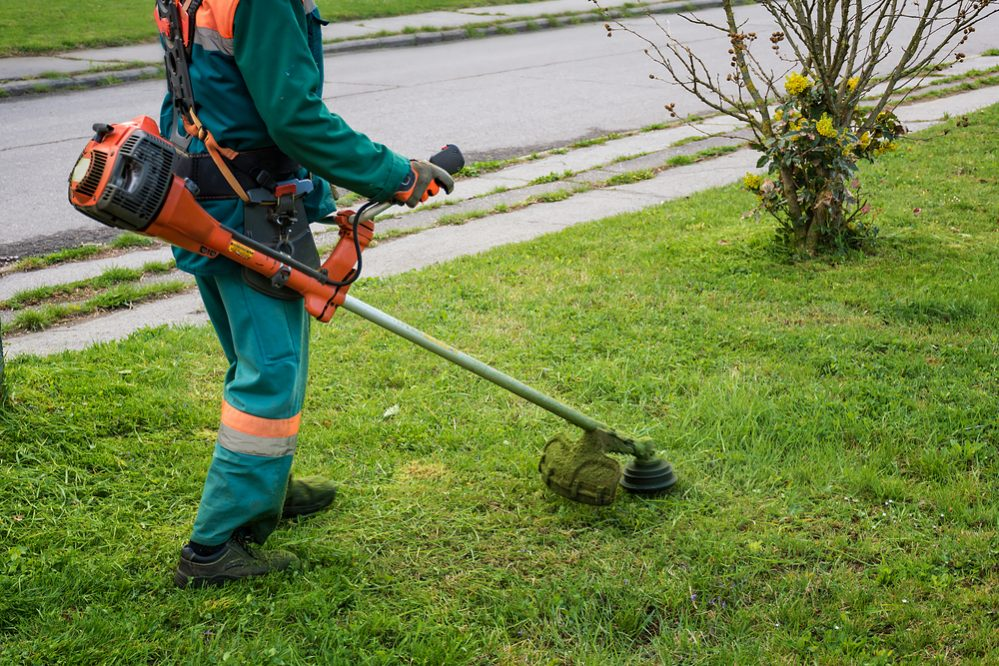 Best Gas String Trimmer Reviews buying guide