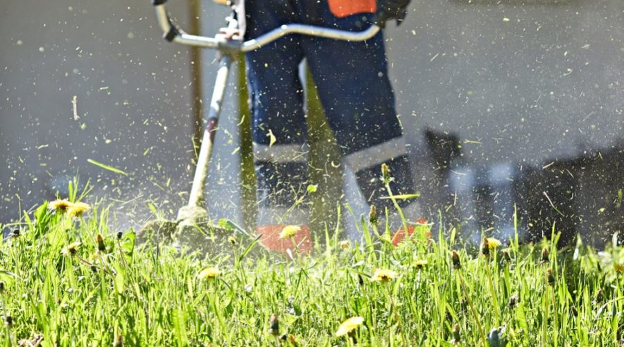 Best Gas String Trimmer Reviews
