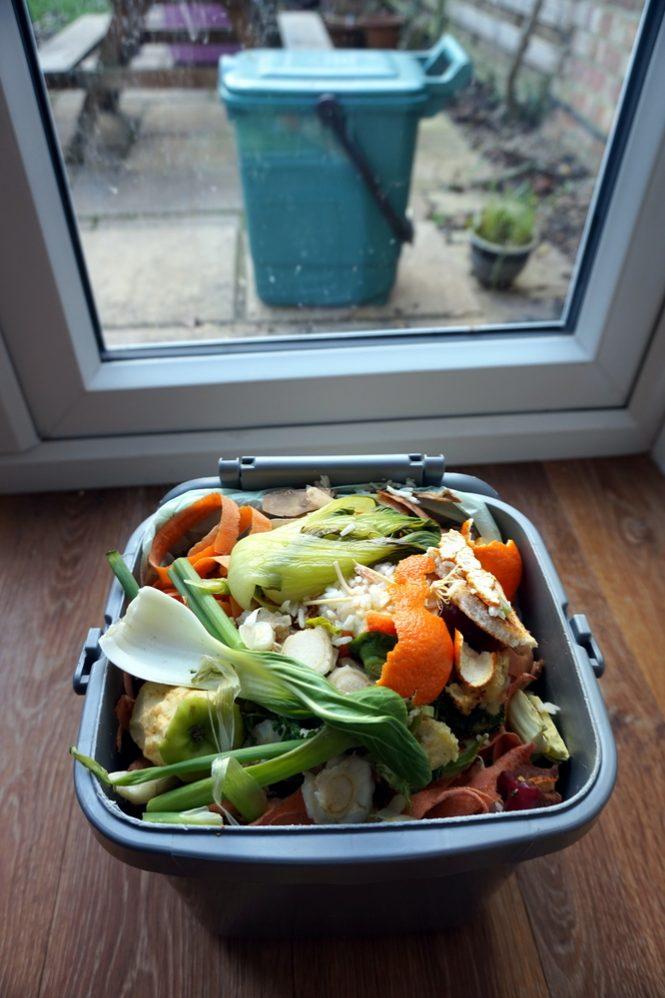 Best Indoor Compost Bin Reviews Where