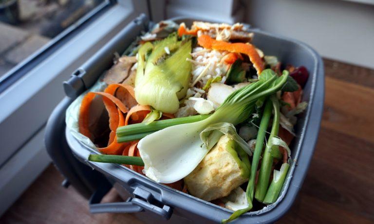 Best Indoor Compost Bin Reviews