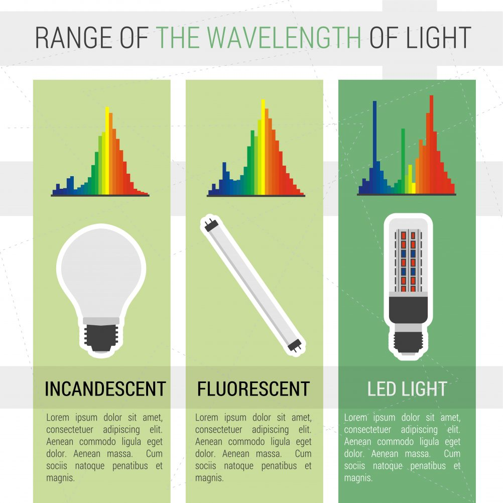 Best LED Grow Lights 2019 – 300W, 450W, 600W, 1000W, 1200W
