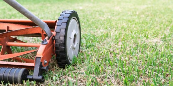 Best Reel Mower Reviews of 2019 – Manual Push Mower for Your Lawn