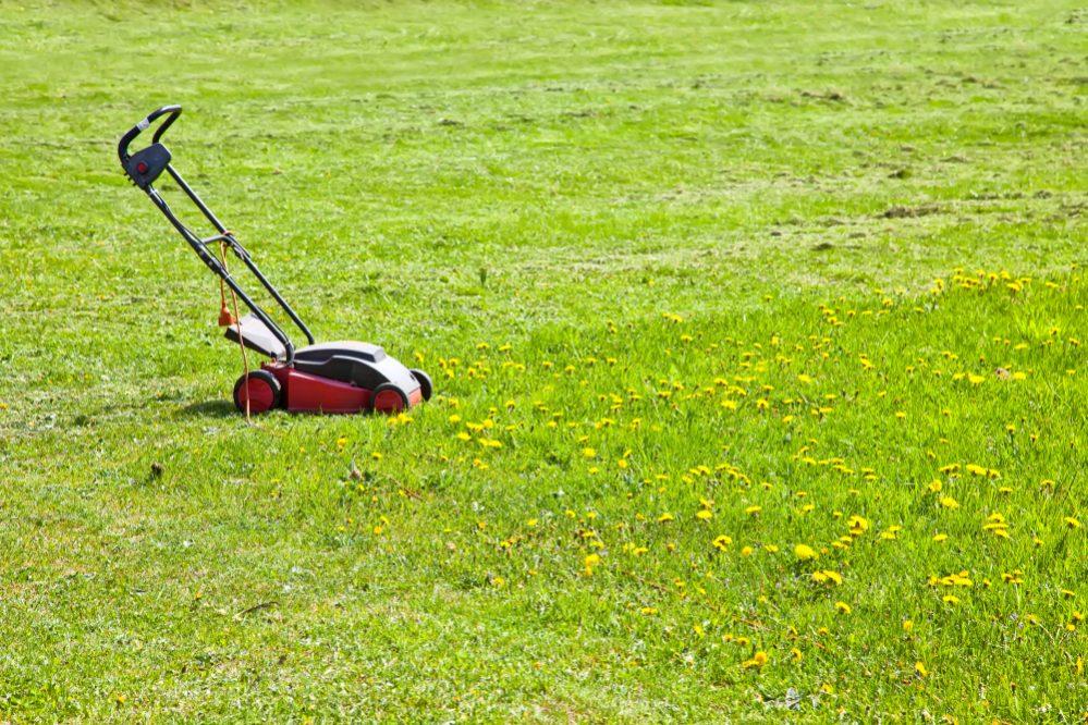Best Self Propelled Lawn Mower Reviews Rear-Wheel