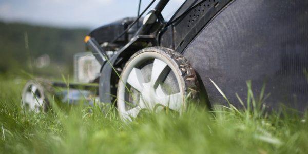 7 Best Self Propelled Lawn Mowers (Reviews of 2019)