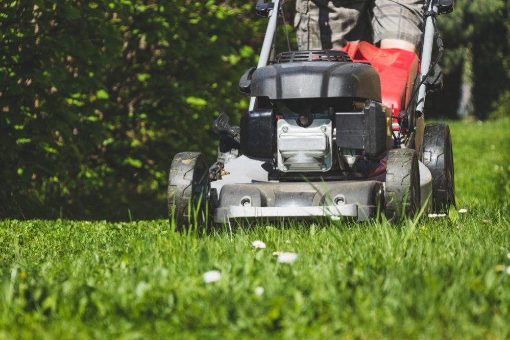 10 Best Walk Behind String Trimmers 2019 – Push Weed Eater